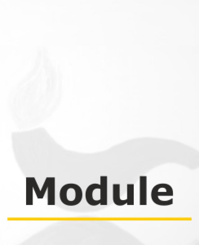 Modul 6: Plan und Praxis in der Wundbehandlung